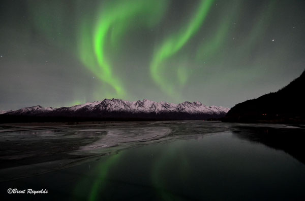 Northern Lights Kantishna Alaska Gifts